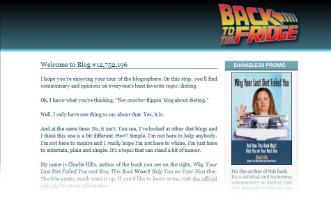 screenshot of version 1 of the web site